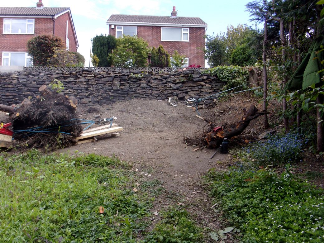 Stump removal May 2020 (12).JPG